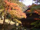 定光寺の紅葉