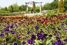 春日井市都市緑化植物園